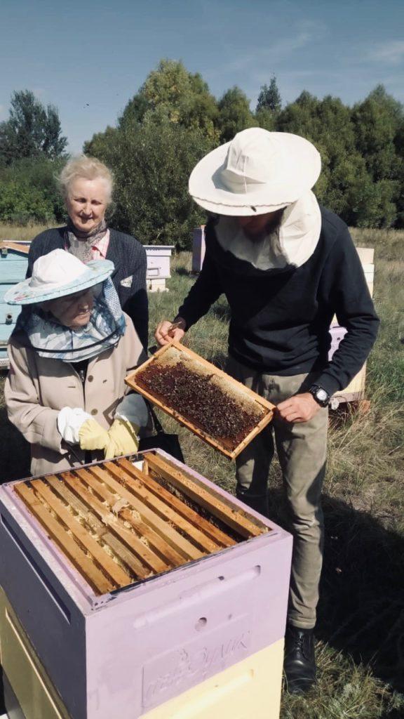 пчел4